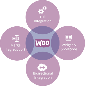 woocommerce-development-service